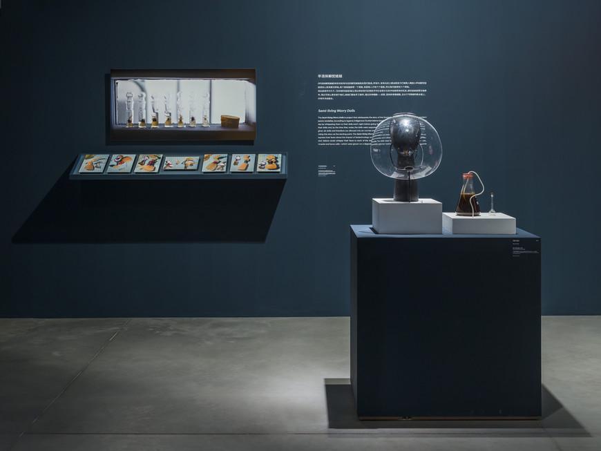 3奥伦·凯茨:半活体解忧娃娃,展览现场图